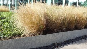 The Best Part Of Corten Edging And Galvanised Steel Borders Is That Their  Maintenance Is So Easy U2013 They Are Corrosion Resistant, Do Not Need Extra  Treatment ...